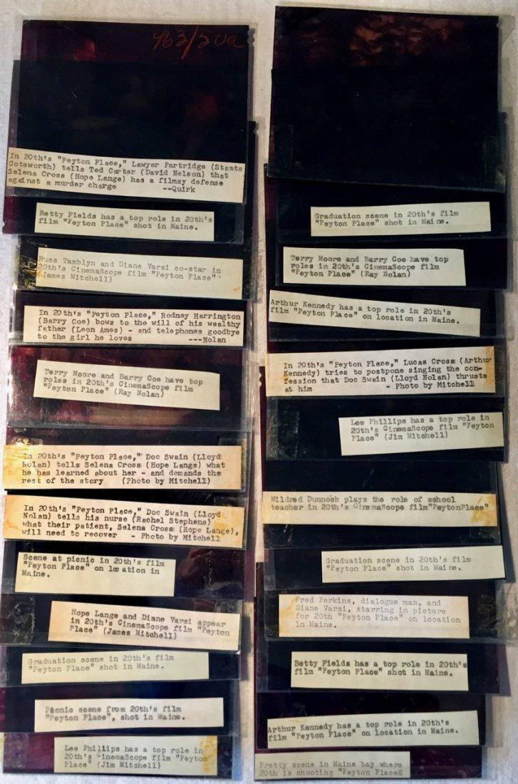 Peyton Place 1953 Camera Negatives, J.Mitchell (24) - 6