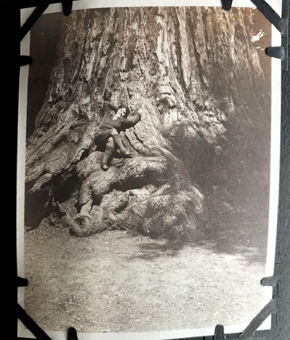 Travel Photograph Album of California ,1900's (200+) - 4