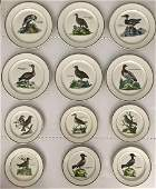 PARADISO Pattern Villeroy & Boch Porcelain Plates (12)