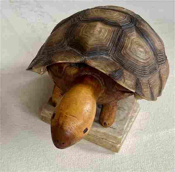 Vintage American Folk Art Carved Wood Box Turtle
