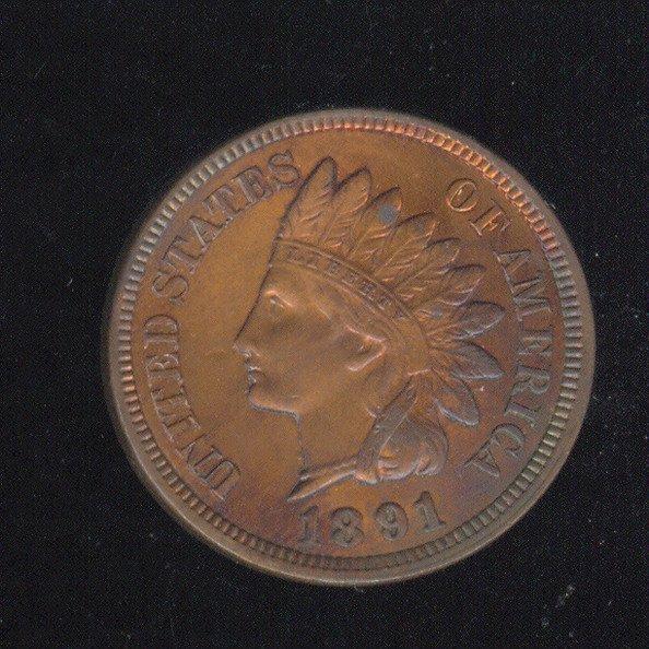 3508: 1891 U.S. INDIAN HEAD CENT