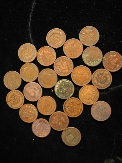 6824: 24 U.S. INDIAN HEAD CENTS