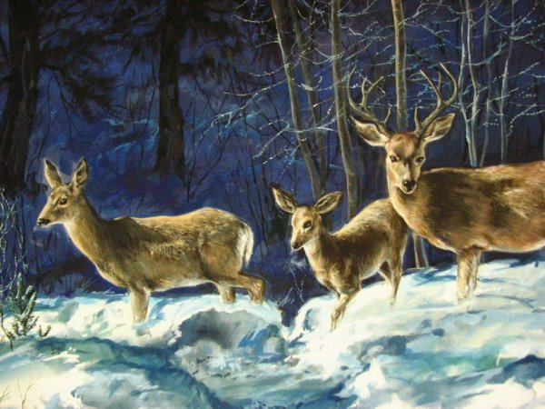 119: H VANEYCK PAINTING Moonlight Deer