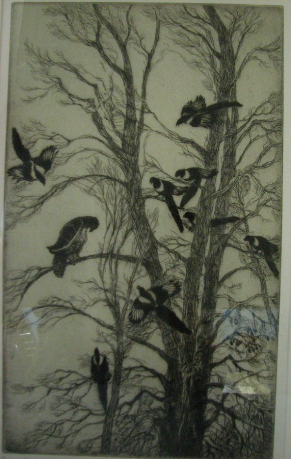 177: GENE KLOSS Etching Magpies Red-tailed Hawks