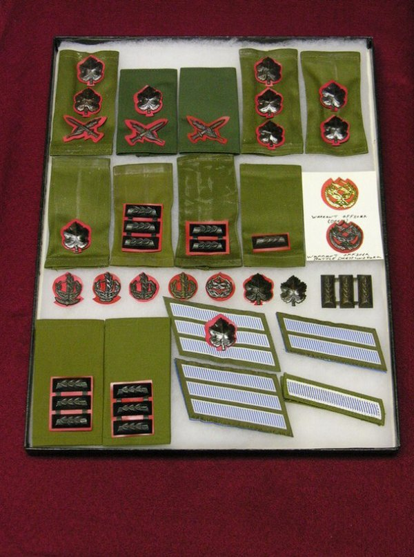 14: ISRAEL DEFENCE FORCES RANKS AND CHEVRONS