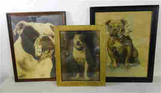 """(3) DOG THEMED WORKS INC. 2 VINTAGE PHOTOS """"BULLY"""