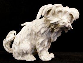 Meissen White Bolognese Terrier