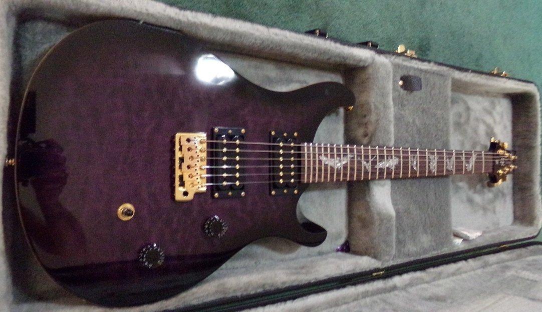 PRS SE Paul Allender Electric Guitar - 6