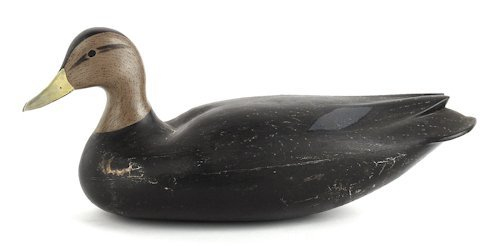 138: Black duck hollow body decoy, probably New Jers