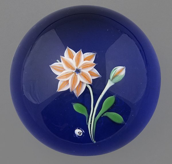 Baccarat paperweight with an orange and white flo