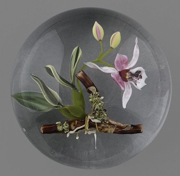 Paul Stankard cymbidium orchid paperweight, signe