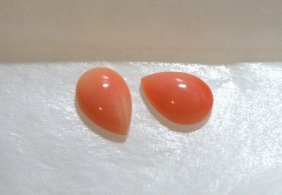 Natural Untreated 10x7mm Sea Coral Matching Pair