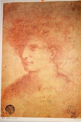 Leonardo Da Vinci Printed In Italy