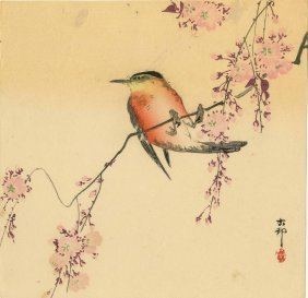 Koson Ohara - Songbird On A Flowering Branch - 1930s