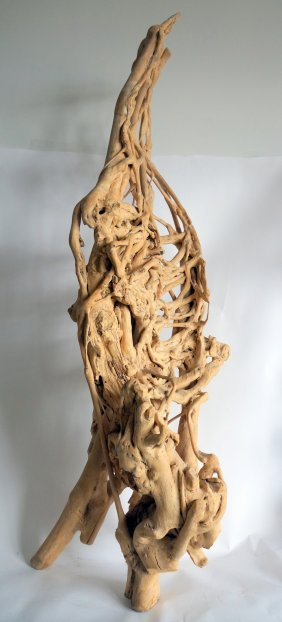 Natural Tree Root Sculpture Collected From Southwest