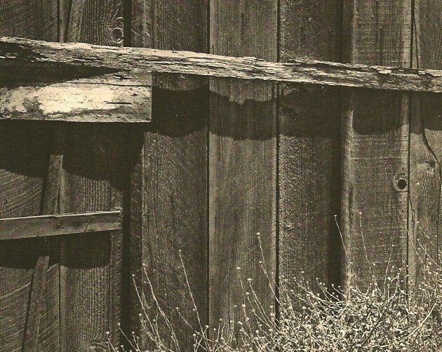 Adams. Ansel - Old Fence