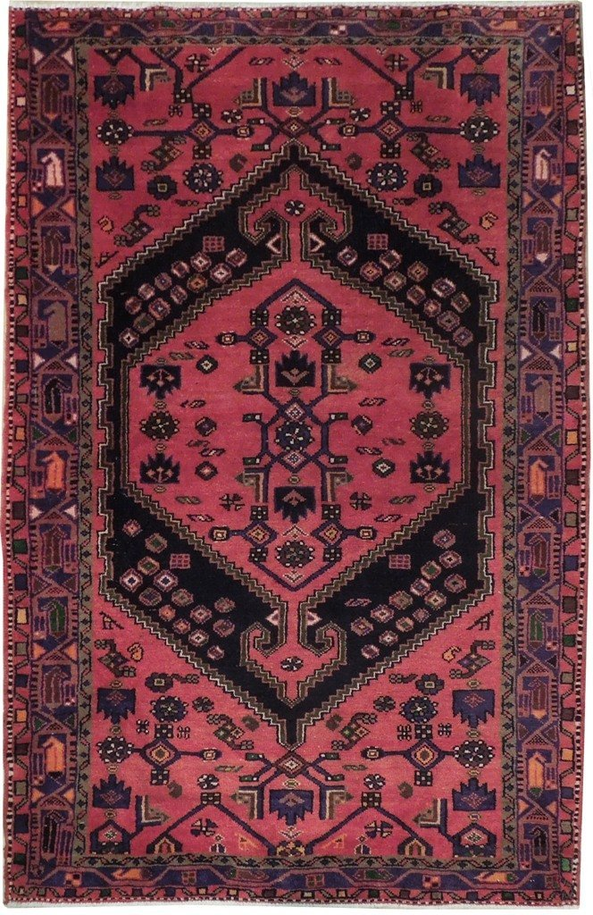 5X7 Persian Hamadan Rug Hand Knotted Area Rugs