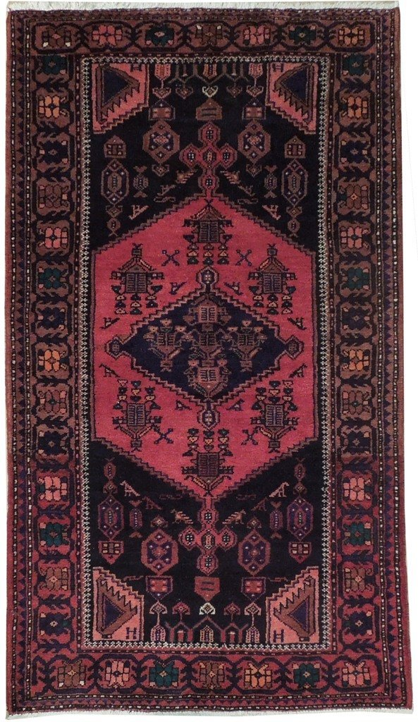 4X7 Persian Hamadan Rug Hand Knotted Kitchen Rugs