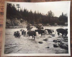 Winchester 73 - Set Of 6 1950 Movie Stills 8x10 - James