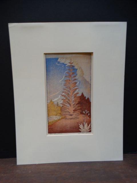 Anders Aldrin: Block Print, Norfolk Pine & Coast