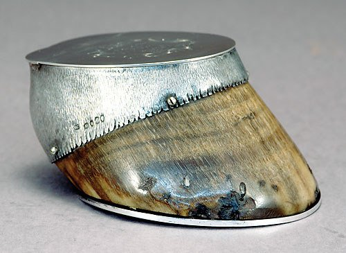 1015: Victorian sterling-mounted hoof box
