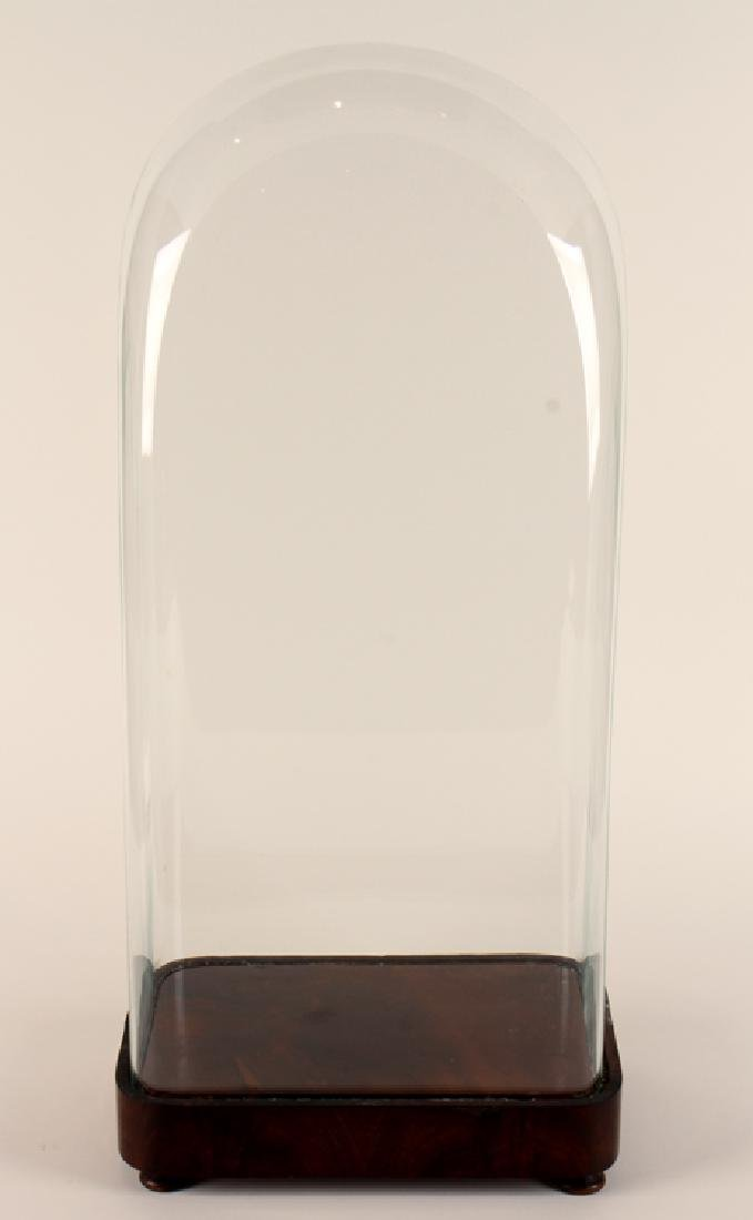 LARGE FRENCH GLASS DOME RESTING ON MAHOGANY BASE