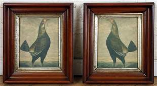 PAIR 2 FRAMED ANTIQUE COLORED PRINTS OF FOWL