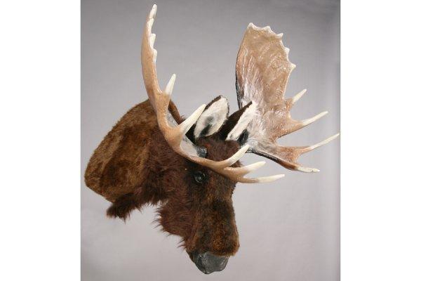470: A mechanical talking moose head mount.
