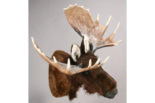 470: A mechanical talking moose head mount. - 2