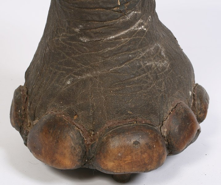 542: LATE VICTORIAN ELEPHANT FOOT TAXIDERMY STOOL - 3