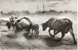 Ukrainian refugees. 1941