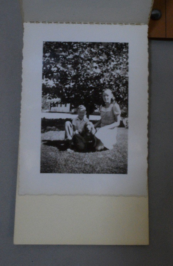 TRAY OF VARIOUS VINTAGE BLACK AND WHITE PHOTOGRAPH - 2