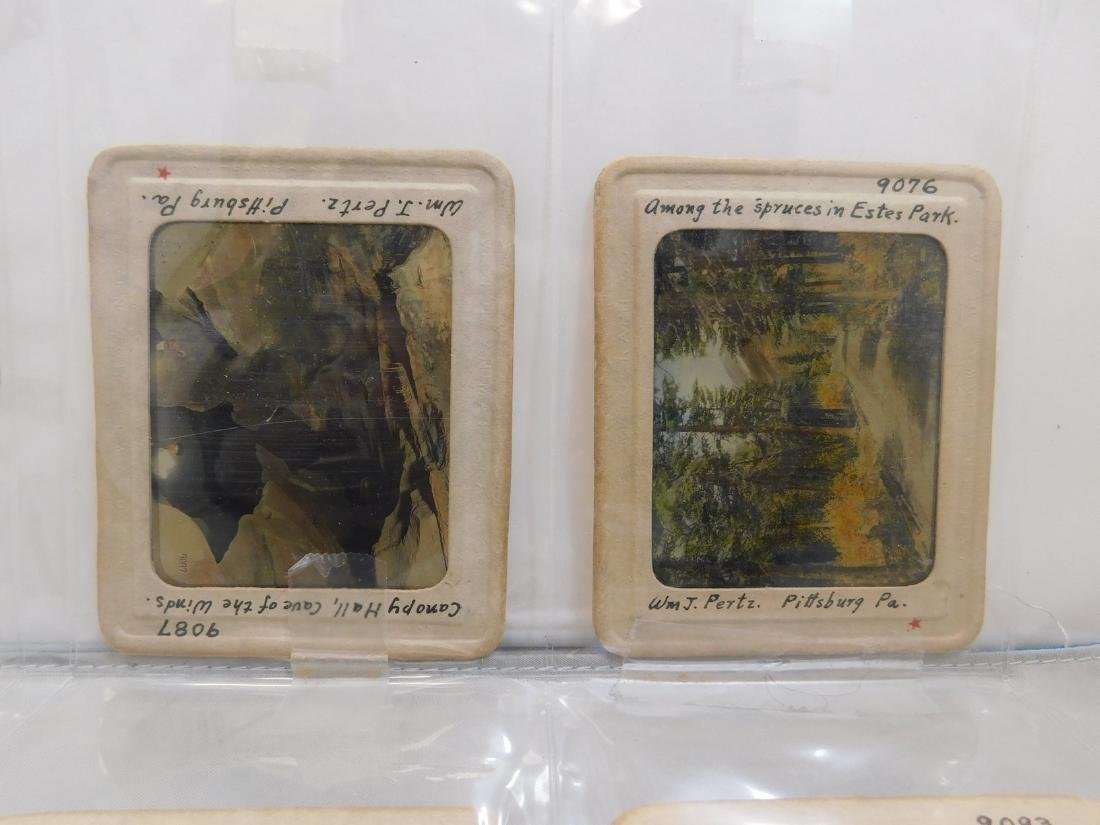 Early Photogrphic Slides & Plate - 2