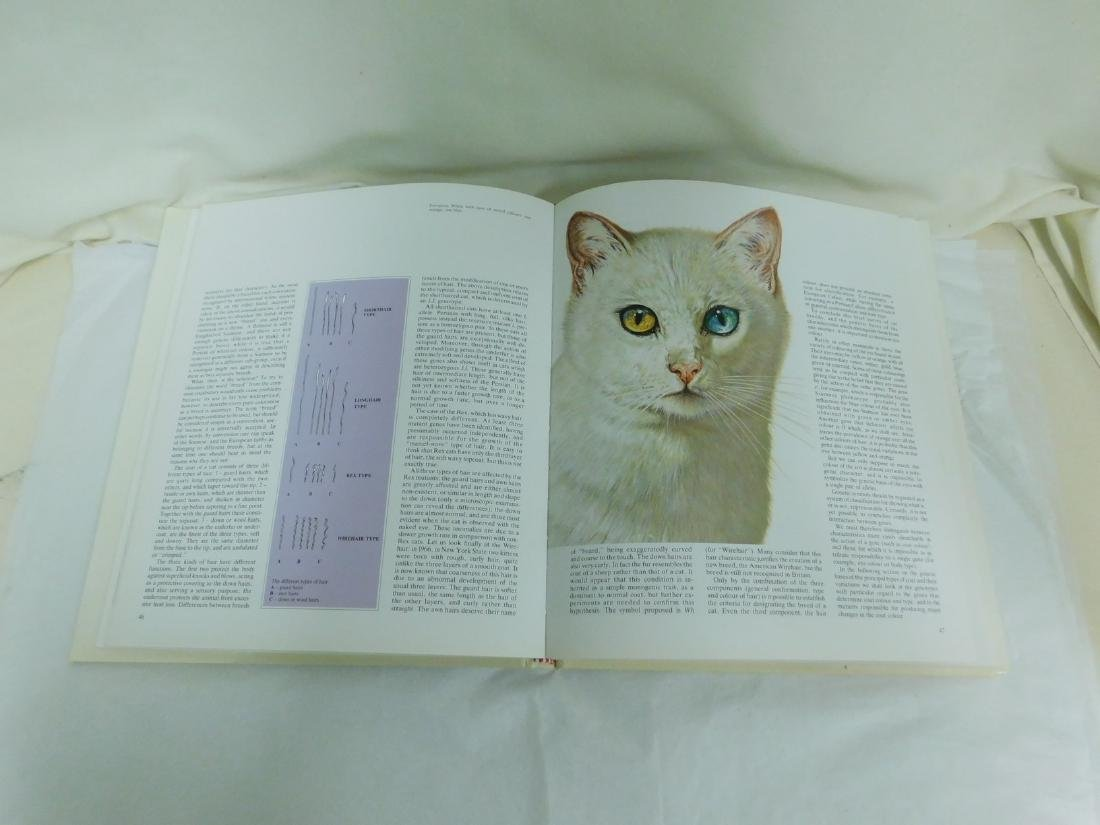 COFFEE TABLE CAT BOOKS - 2