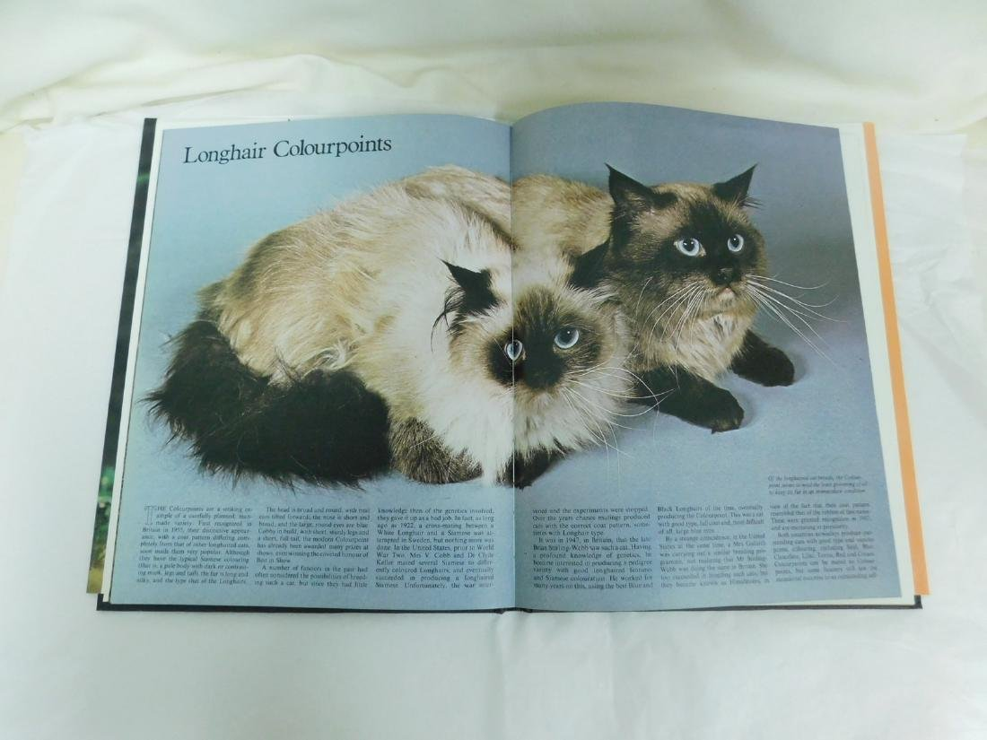 COFFEE TABLE CAT BOOKS - 6