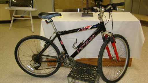 Adult Rei Aspen Novara Mountain Bike
