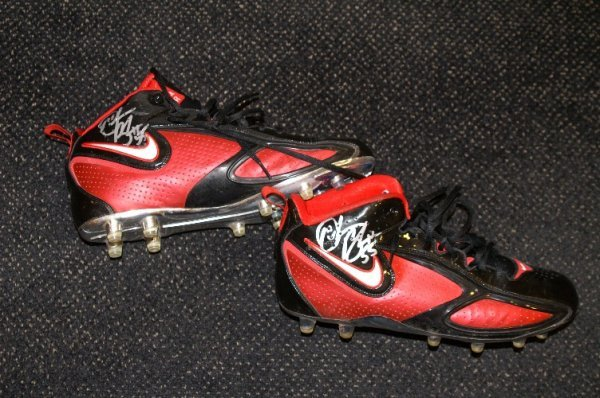 8: Derrick Brooks game used and autographed shoes