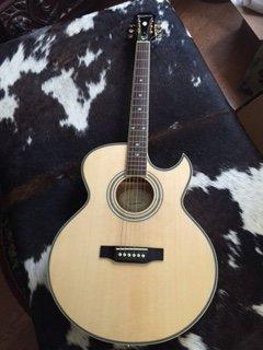 NEW Epiphone PR-5E/N Electric Acoustic Guitar