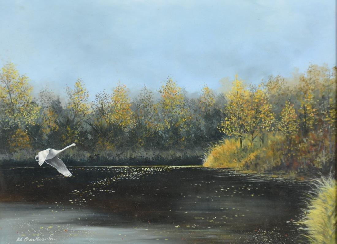Al Barker, Passing Over Single Trumpeter Swan