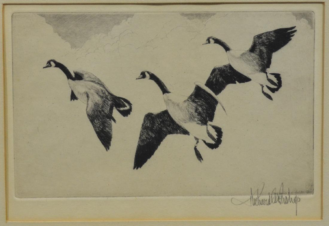 Richard Bishop Etching, Geese