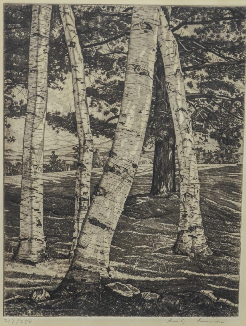 """Luigi Lucioni etching, """"Birches and Pine"""""""