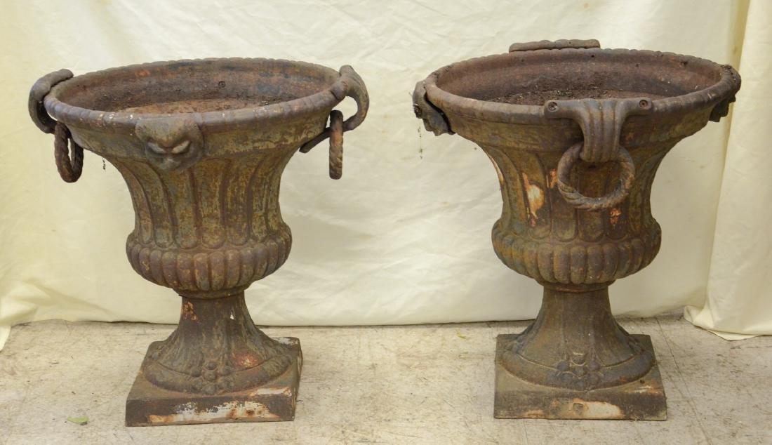 Pr cast iron planters with lion head decoration