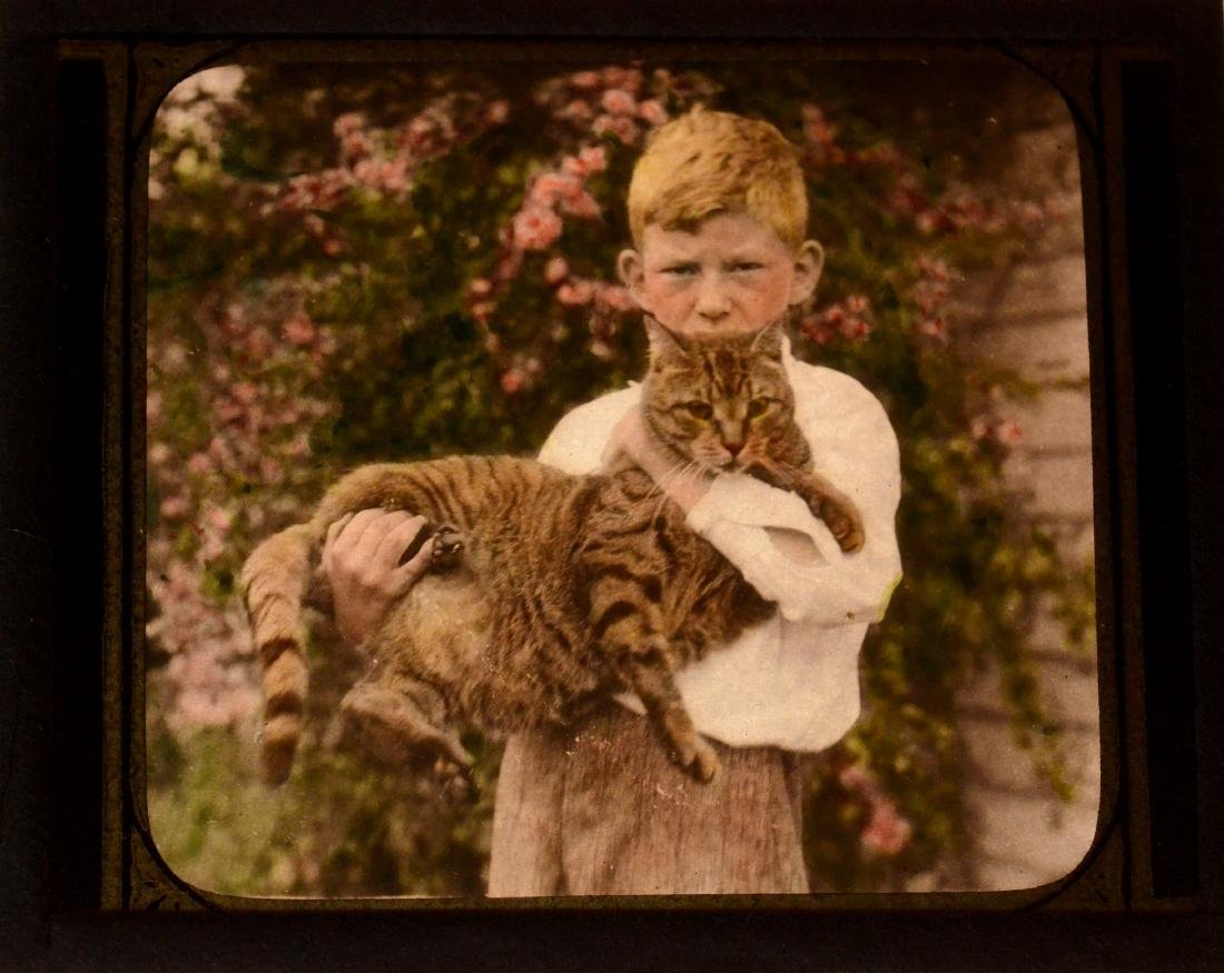 58 baby/child/family family glass negative photos - 6