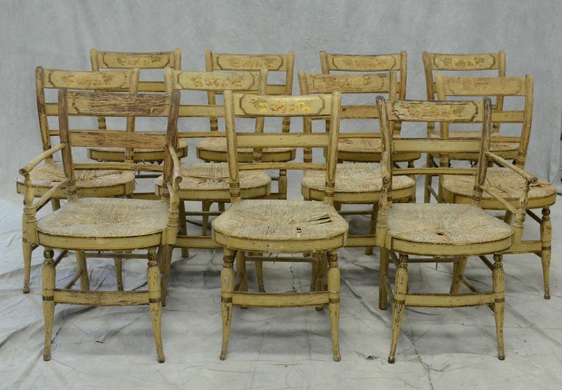 (11) Sheraton fancy chairs