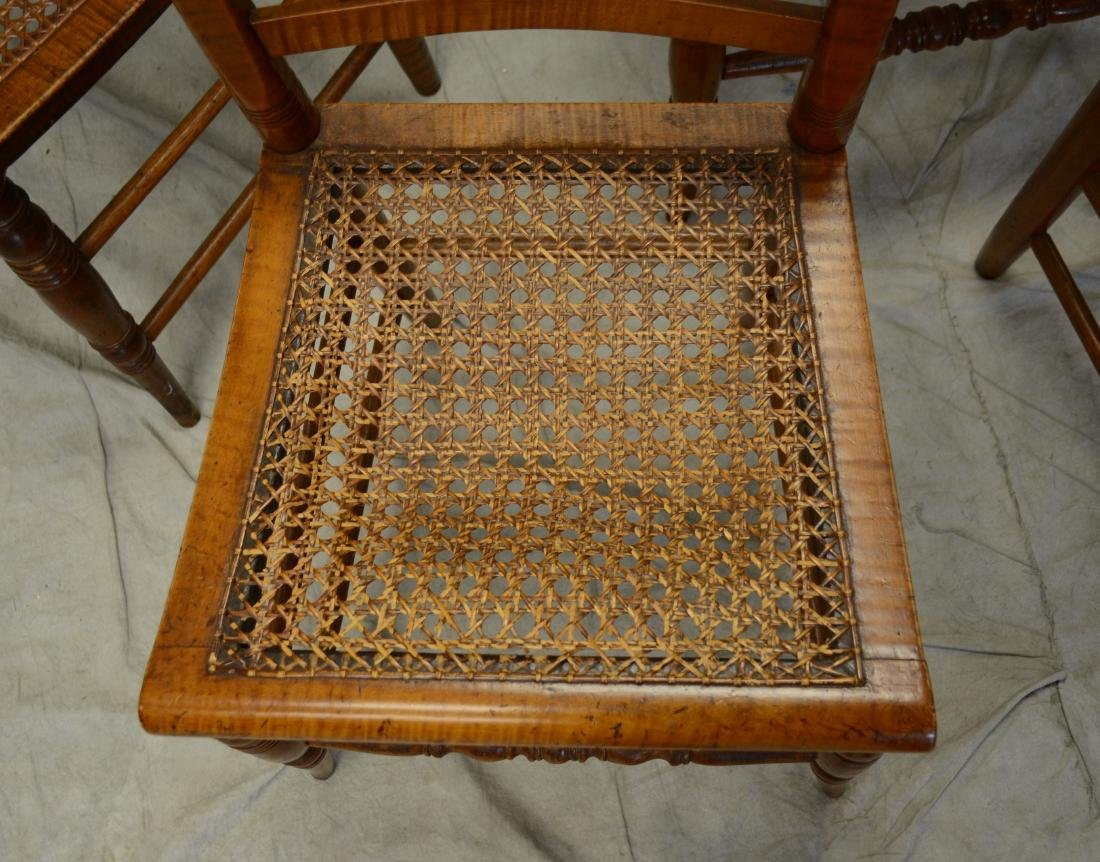 (5) Carved figured maple Federal side chairs - 2