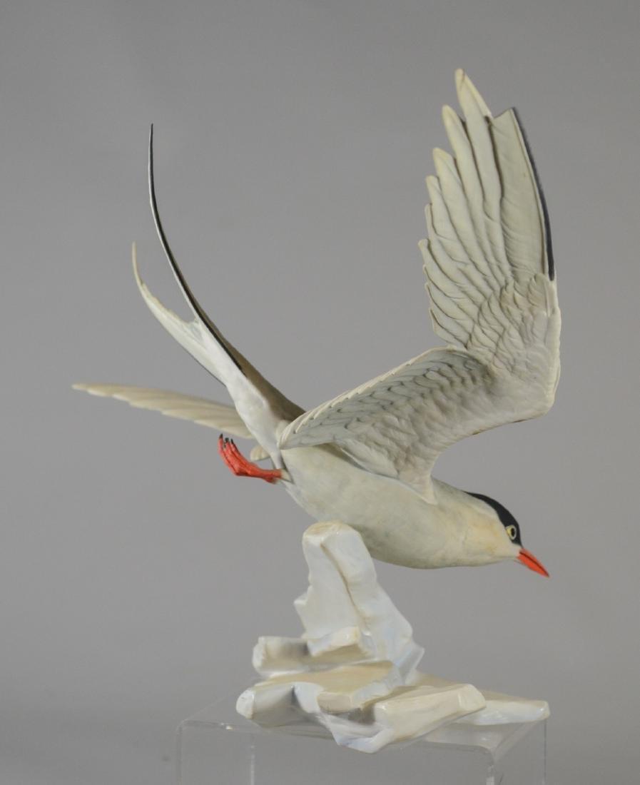 Boehm porcelain Arctic Tern bird figurine - 8