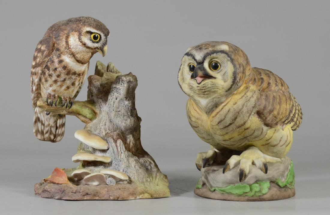 2 Boehm porcelain bird owl figurines