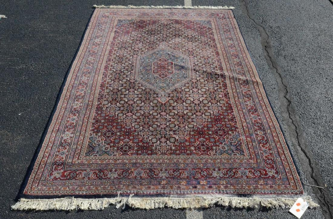 "5'9"" X 9'4"" Bidjar Rug; moth damage"