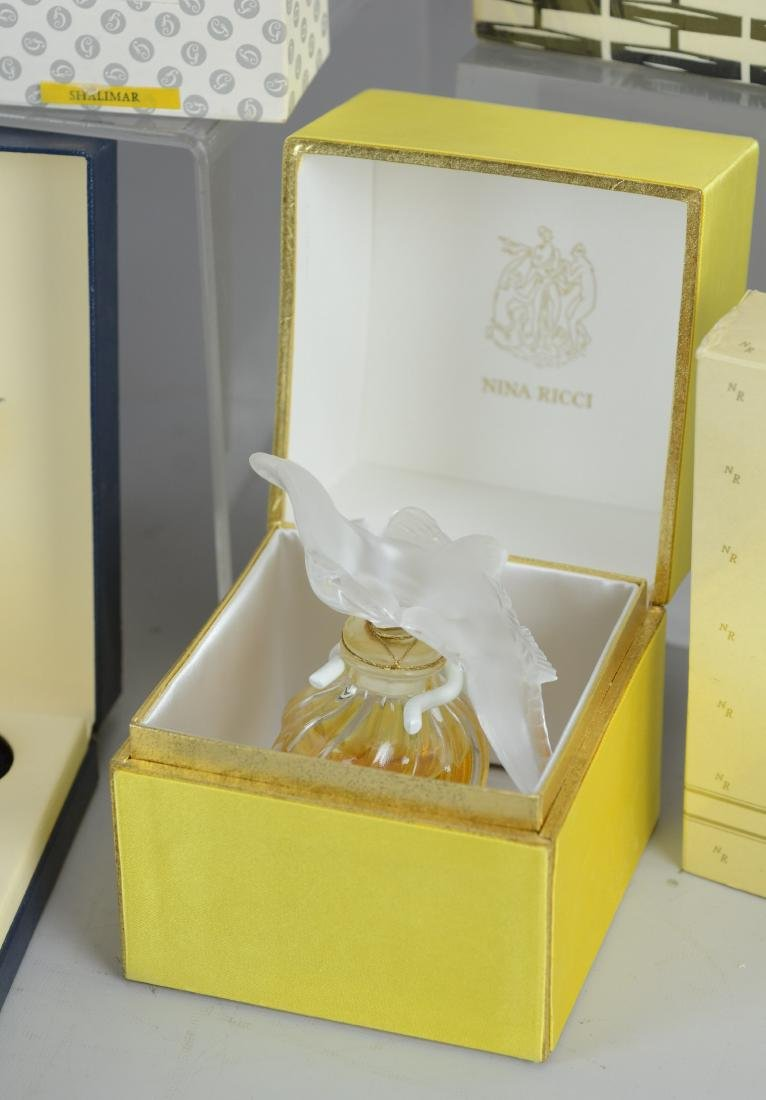12 Designer perfumes & talcs in original boxes - 3