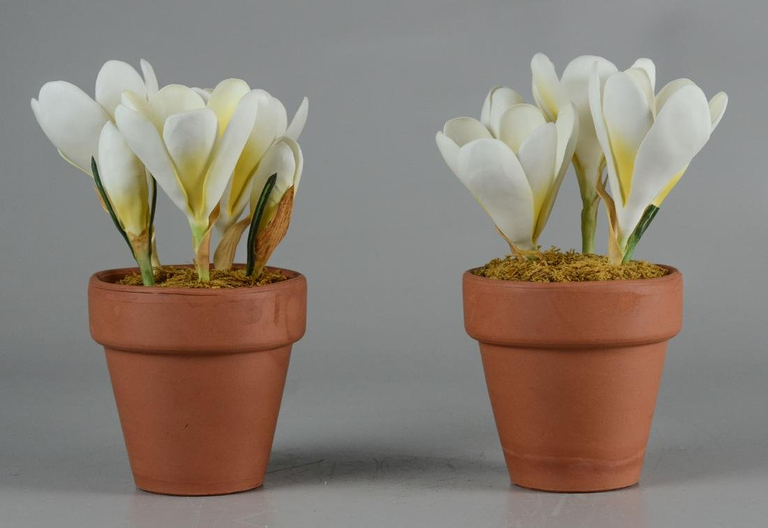 5 Porcelain Floral Groupings - 6